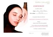 Certifikát mozaiková modelovací metoda