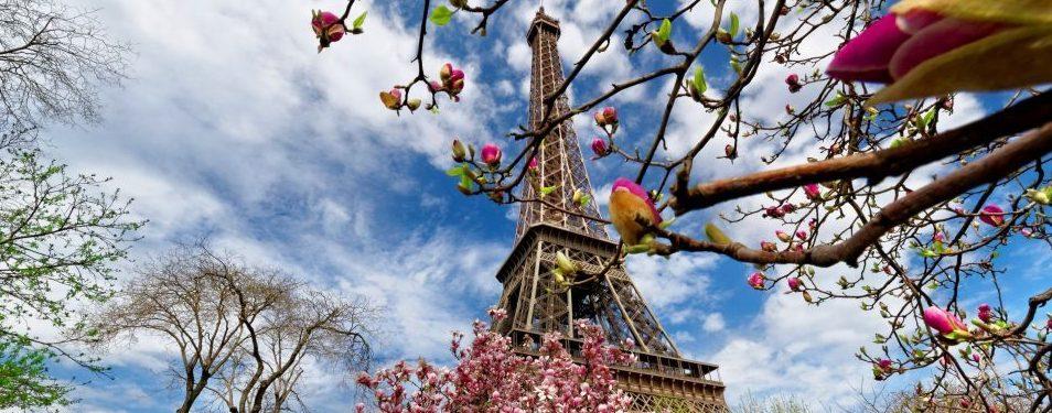 Detox pleti podle Pařížanek!