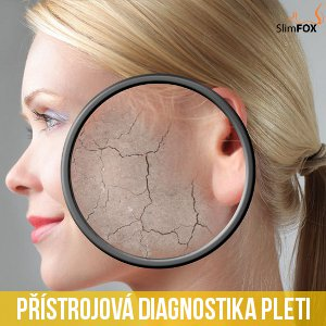 Diagnostika/analýza pleti