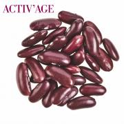 Kmenové buňky z fazole