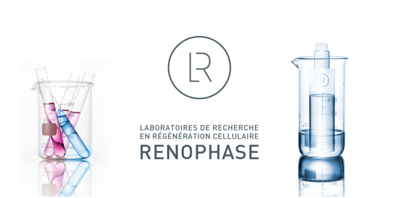 renophase_profil